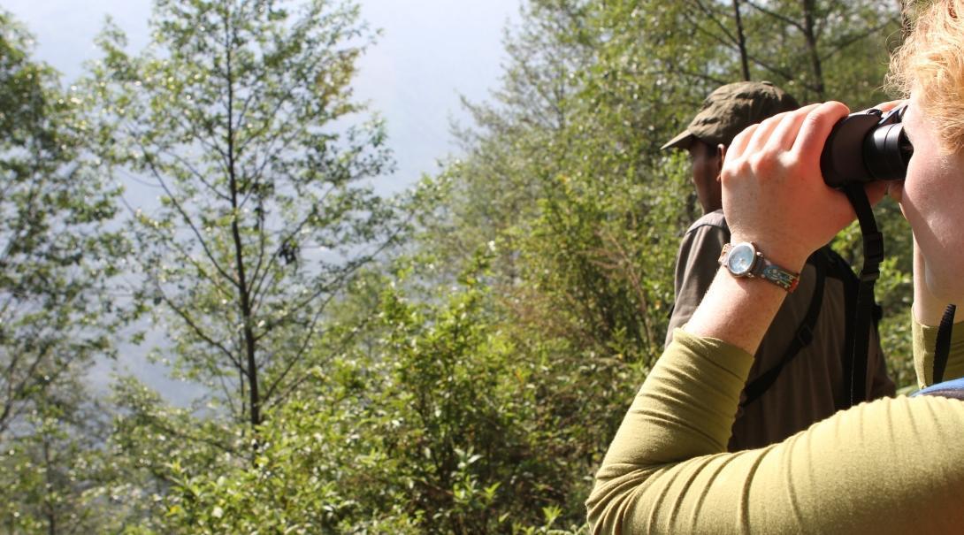 Voluntaria participando en una investigación durante su voluntariado de conservación del Himalaya en Nepal.